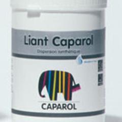 caparol-binder
